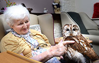 Bodawen Residents have a Hoot of a time